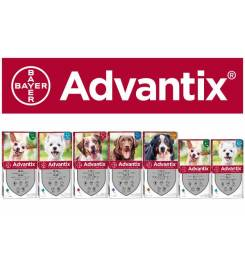 ADVANTIX PESTICIDE VIALS FOR DOGS