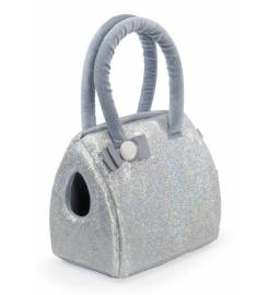 CAMON SILVER GLITTER CARRYING BAG