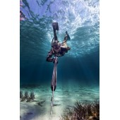 Many online products for marine and underwater apnea
